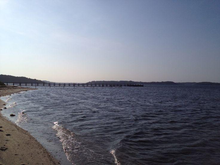 Løvodde strand