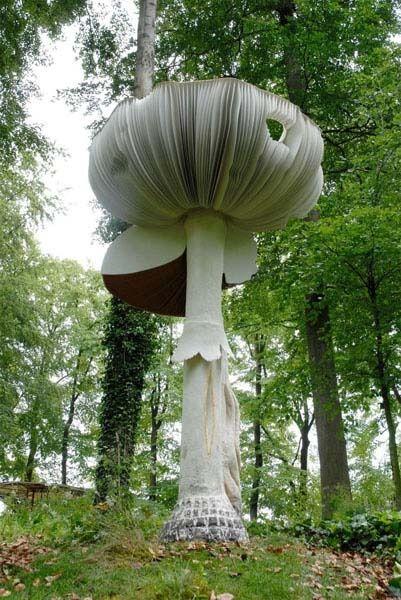 Giant mushroom Mushrooms Pinterest