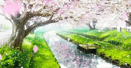 Анимация Аллея цветущих сакур у реки, кадр из аниме Прекрасна, как луна / Tsuki ga Kirei