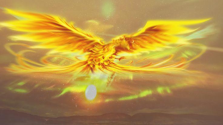 【鳳凰の祝福】黄金の不死鳥が貴方に金運とあらゆる幸運を運ぶ飛翔開運ヒーリング【極楽鳥の翼】