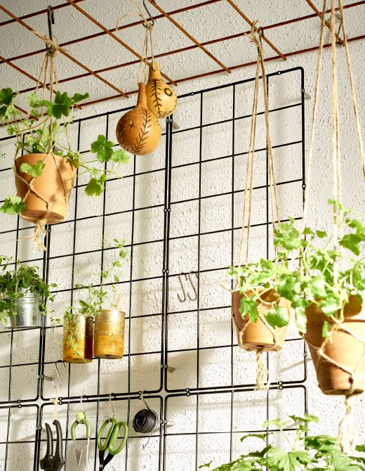 A trellis against the wall makes a framework that you can easily hang pots from.