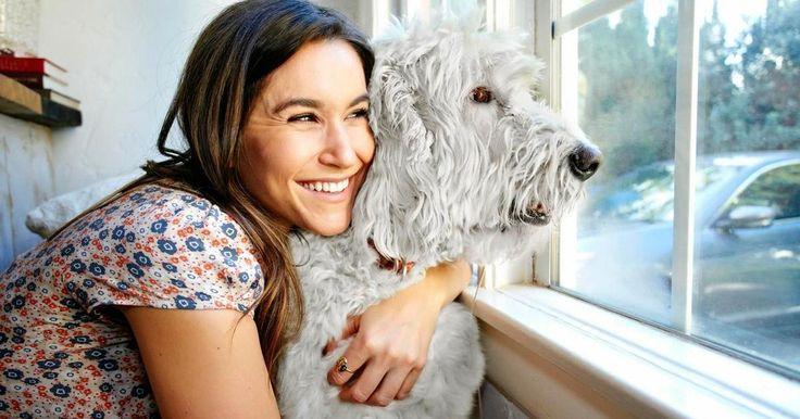 13 mejores perros hipoalergénicos, ¡adiós a la alergia a los perros!