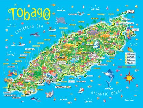 Who knew that such an intimate Island like Tobago has so much to offer? We did... (duh)  but just in case you didn't you will find this map VERY useful on your ventures to beautiful Tobago!    #Tobago #Map #TobagoMap #TrinidadandTobago #Trinidad #TobagoBookings #TobagoAttractions #TobagoBeaches #TobagoSights #Caribbean #Vacation #Trip #Island