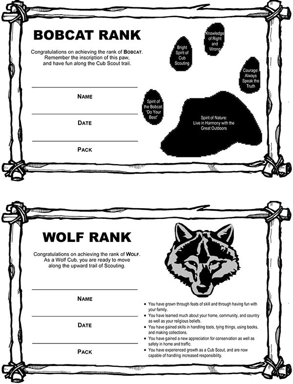 scout certificates template - best 25 certificate of appreciation ideas on pinterest