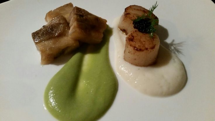 Caramelised Pork Belly with Scallops, Cauliflower and Pea Purees