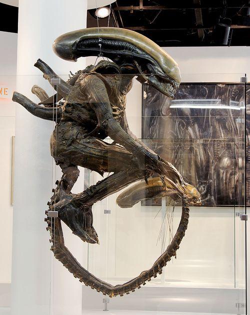 147 best images about H.R. GIGER on Pinterest   Giger bar ... H.r. Giger Queen Alien