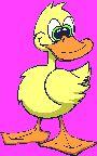 s animados animales patos