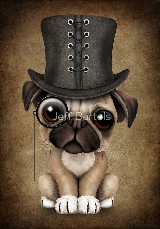 Cute Pug Puppy Dog with Monocle and Top Hat | Jeff Bartels