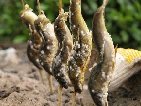 鮎の塩焼き | Sumally (サマリー)