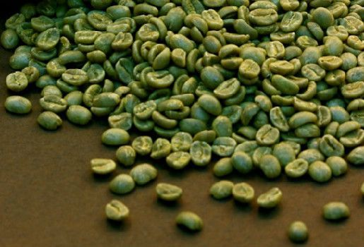 Raw Green Coffee Beans Wholesale