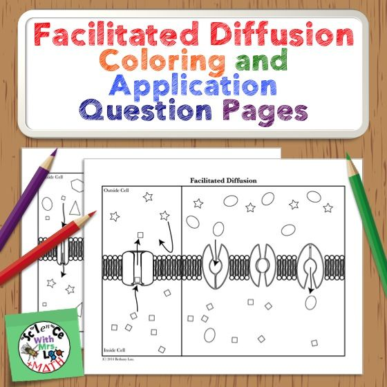 Facilitated Diffusion Coloring and Application Question Pages. Science and Math with Mrs. Lau