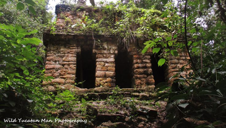 Abandoned Maya temple in the Lacandon Rainforest [1294x732] [OC]