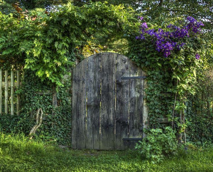 1000 bilder zu gartenz une und gartentore garden fences. Black Bedroom Furniture Sets. Home Design Ideas