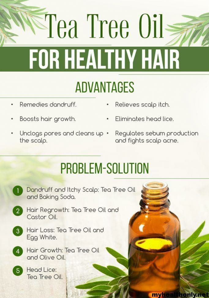 Top Benefits Of Tea Tree Oil For Hair You Must To Know In 2020 Tea Tree Oil Hair Tea Tree Oil For Acne Tea Tree Oil Uses