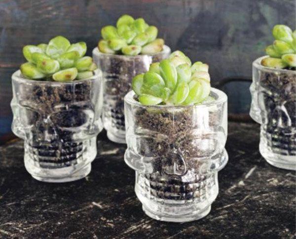 Skull Shot Glass Planters - from Country Living via Formal Fringe