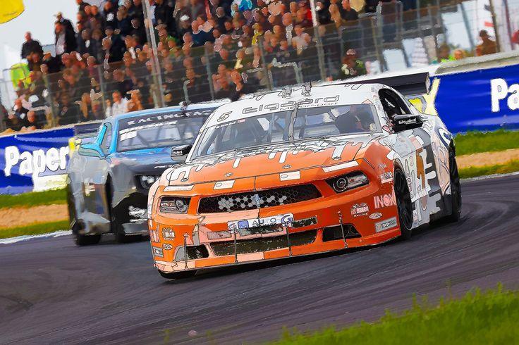 IB TREBBIEN – Orange Mustang