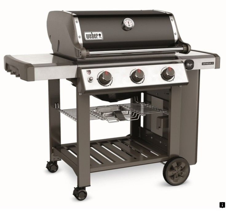 Look At The Webpage To Read More On Weber Grill Parts Please Click Here To Read More Viewing The Website Is Wo Natural Gas Grill Propane Gas Grill Gas Grill