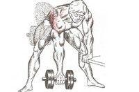 Силовые тренировки против болей в спине https://mensby.com/sport/health/1502-728  Ученые рекомендуют! Упражнения, направленные на усиление мышц спины, таза и всего туловища, следует выполнять 3 - 4 раза в неделю.