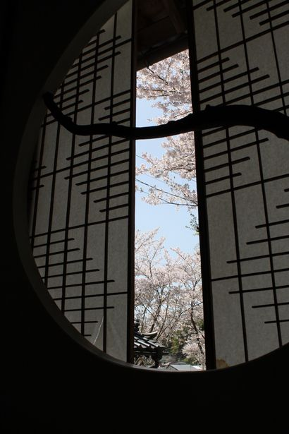 Japanese shutters opening on to cherry blossoms.