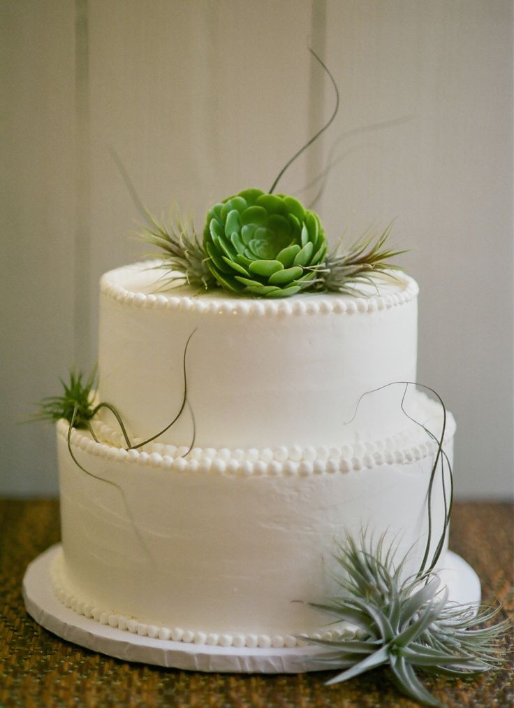 Succulent Wedding Cake / #decoration #cake #green #idea