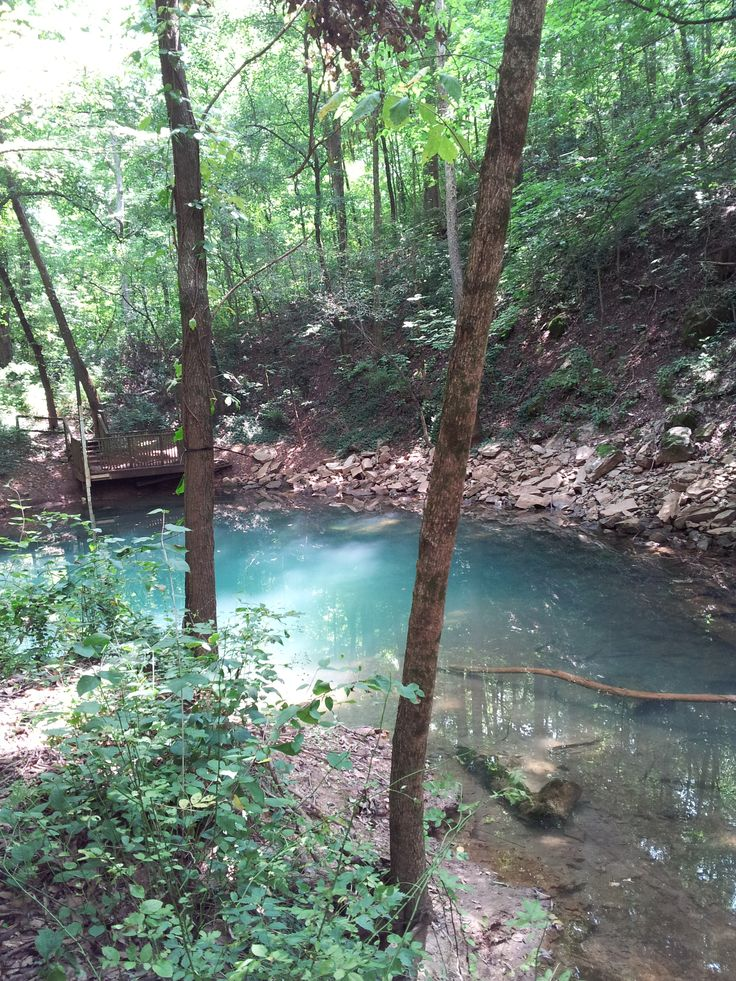 Blue Hole. Bowling Green Kentucky. I love this place!!