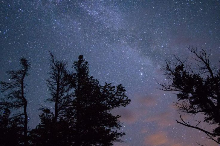 Find me on Instagram! Can't wait to get another chance to photograph the Milky Way. #explorealberta #jasper