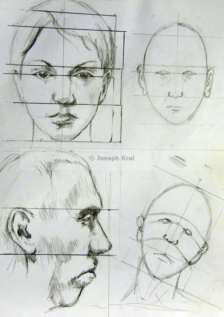 face and head proportions - origin art by book of Andras Szunyoghy