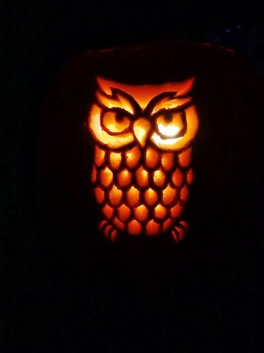 1000 ideen over owl pumpkin carving op pinterest halloween easy owl pumpkin carving ideas be sure to follow goodcook on twitter to learn pronofoot35fo Images