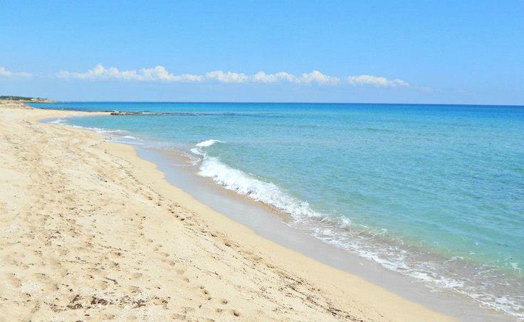 l'area naturale della pineta e spiaggia di d'ayala the natural area of the pinewood and beach of d'ayala