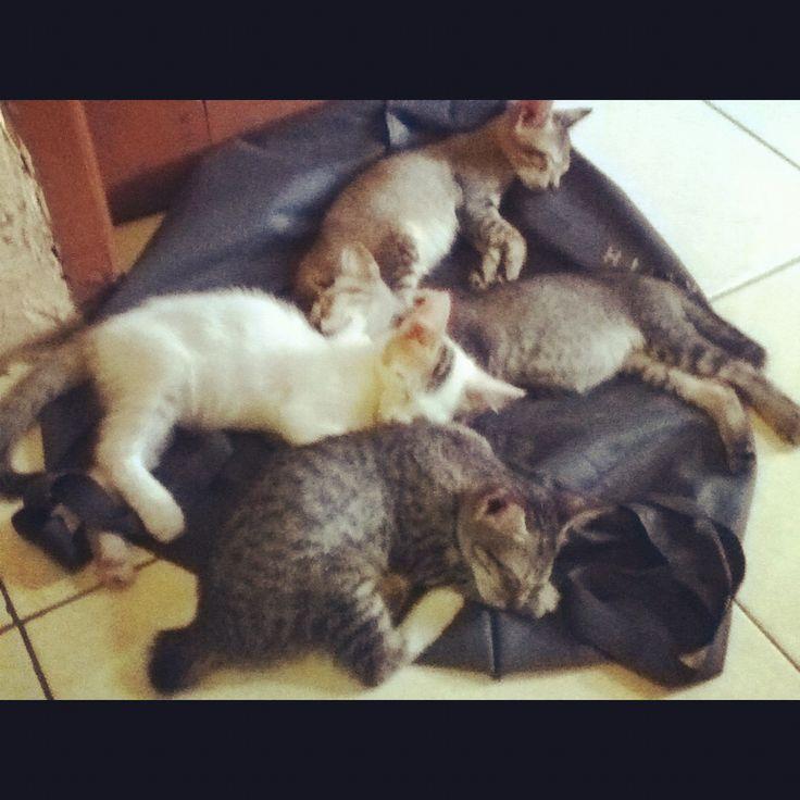 As sleep..
