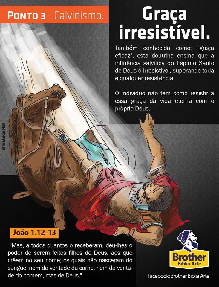 Calvinismo - Ponto 4