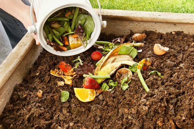 ¿Quieres hacer compost en casa? Aprende cómo en este corto video