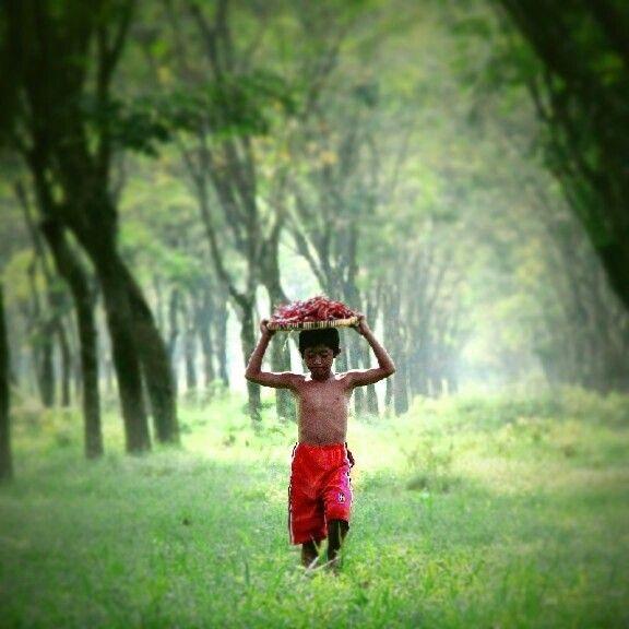 ...my Journey...