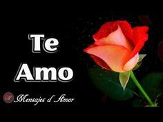 VIDEO DE AMOR CON MUSICA ROMANTICA ❤ PARA TI ESTE MENSAJE DE AMOR | TE AMO | Video Postales de Amor