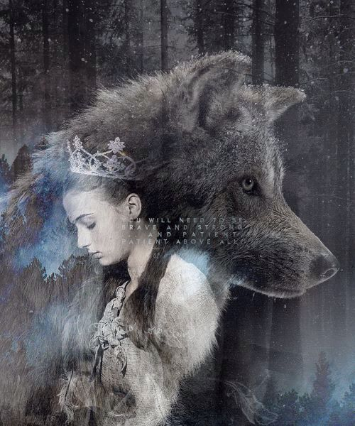 A Lady And Her Dire Wolf: 25+ Best Ideas About Stark Direwolf On Pinterest