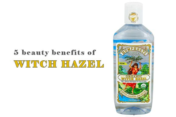 Which hazel (alcohol free) has been used for medicinal and beauty purposes for ages.  It is a wonderful all natural, inexpensive and eco friendly astringent with many uses.