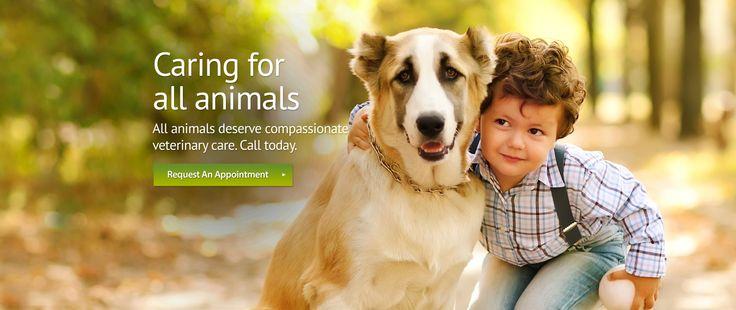 13++ Walnut creek animal hospital ideas