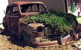 Image result for vintage rusted garden designs