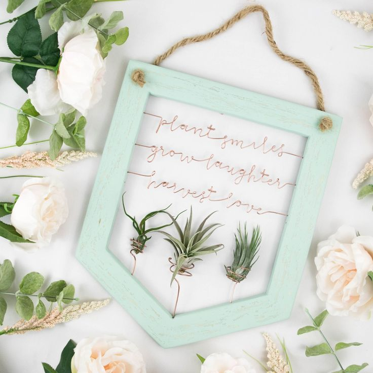 Who doesn't love a good quote? Bonus: It's an air plant holder.