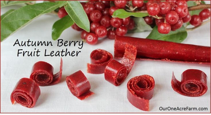 This simple autumn olive fruit leather is made from the delicious, nutritious, anti-oxidant packed berries of an invasive shrub. Because autumn olive is invasive, it is abundant and easy to find. Forage for it, but do not plant it, because it crowds out native plants Transform a pest into a resource with this recipe.