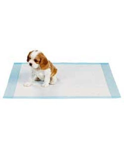 100  Dog Puppy 17x24 Pet Housebreaking Pad Pee Training Pads Underpads >>> Find out more about the great product at the image link.