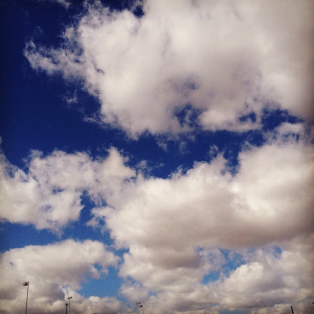 Super blue sky: Distinctive Features, Web Gallery, Blue Sky, Version Include, Ears Accessible, Web Viewer, Super Blue