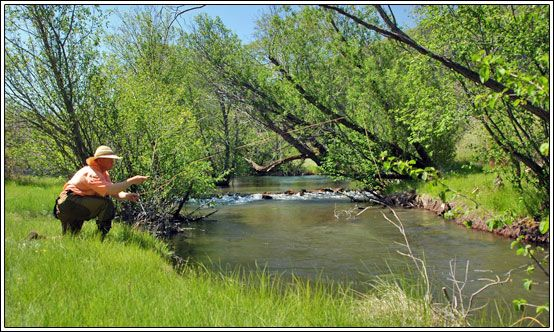 17 best ideas about fly fishing shop on pinterest fly for Hat creek fishing