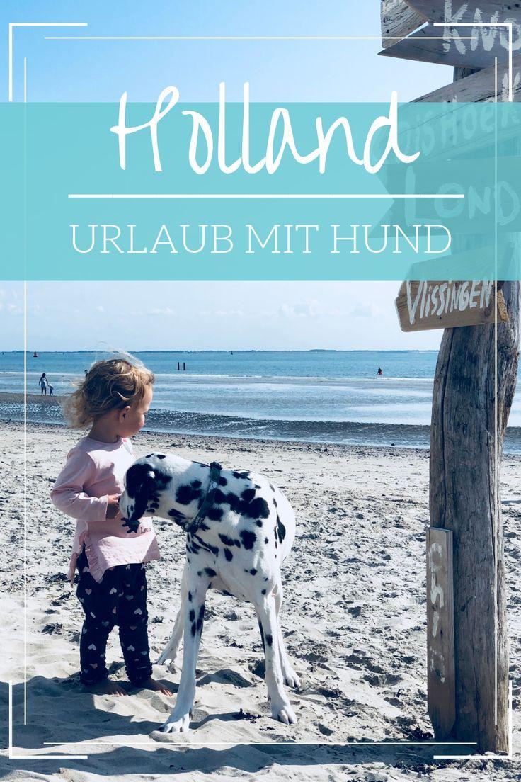 Tipps Fur Zoutelande Mit Kind Hund Unser Liebstes Ziel In Den Niederlanden Holland Strand Holland Strand Urlaub Und Niederlande Strand