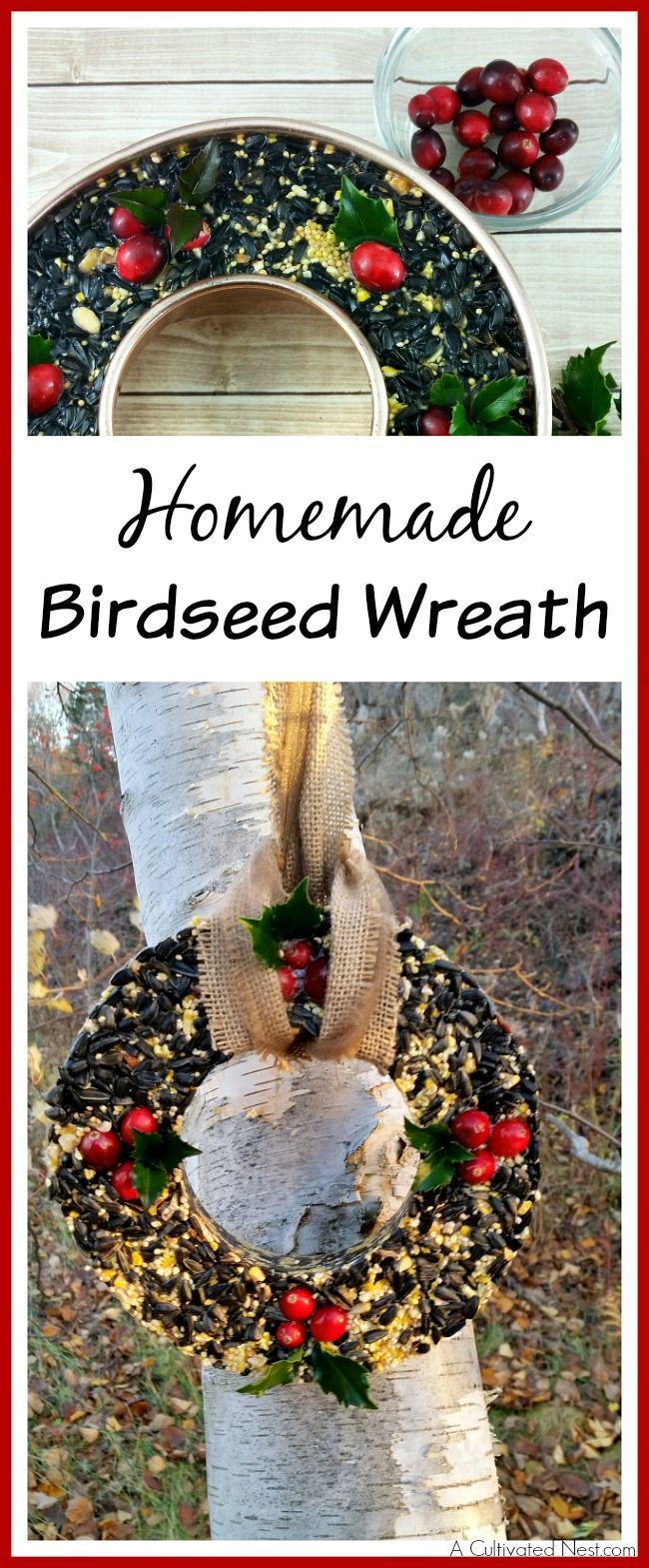 Great step by step turorial! Attract beautiful birds and save money at the same time by making your own pretty DIY Birdseed Wreath! This is a fun project to do with the kids! DIY projects, DIY garden Projects, bird feeder, how to feed birds in your garden