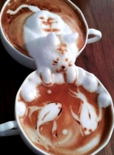 Coffee art 3 d cat and koi pond latte yes for Koi pond maine coon cattery