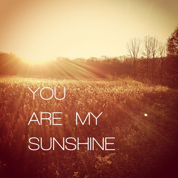 you are my sunshine poem for him