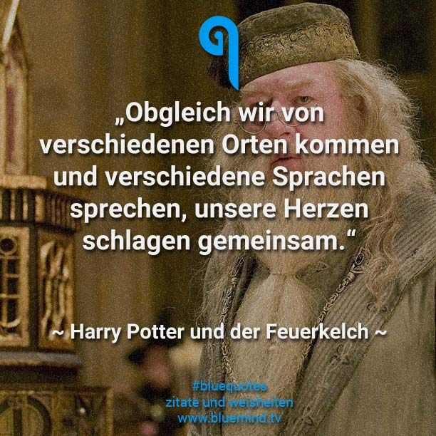 Die 56 Besten Filmzitate Bluemind Tv Filmzitate Beste Filmzitate Dumbledore Zitate