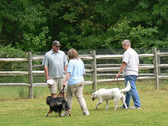 Dog Training In Charlotte has also been recognized on national TV Dog Training in Charlotte has regular appearances on local news networks.    Contact Us  Dog Training In Charlotte NC  Bruce Allen  Animal Behavior Specialist  1800 Camden Rd,  Suite 10756,  C get no-cost dog training websites http://FreeDogTraining.bestonlineproducts.net/