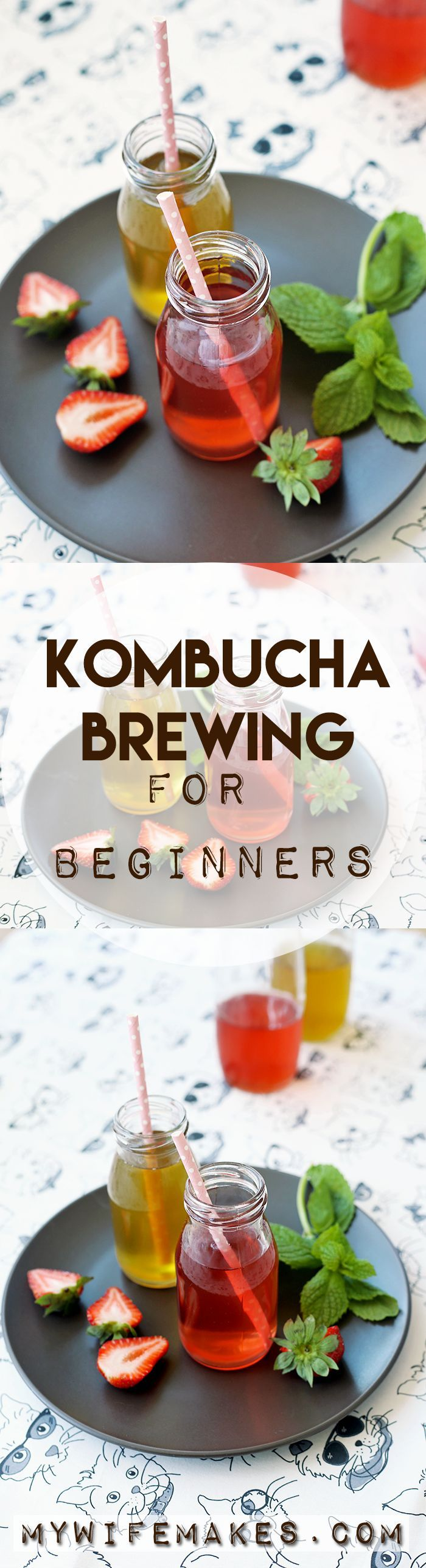Kombucha Brewing for Beginners ~ learn how to make this delicious, healthy drink in your own home for 1/10th of the price | MyWifeMakes.com